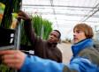 Idee zur Integration: Bayern will Flüchtlinge als Bauern und Gärtner