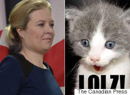 Rempel Pokes Fun At Liberal Press Conference With Cheeky Memes