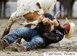 Canadian Cities Should Say No To Hosting Rodeos