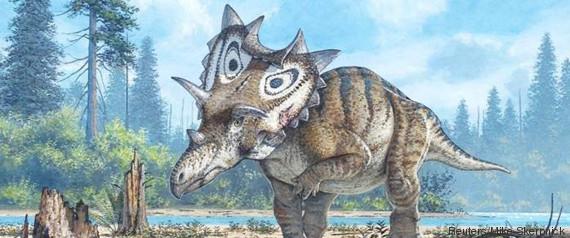 dinosaures à cornes