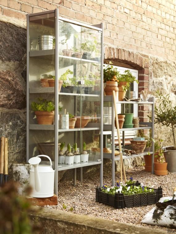 estantería plantas