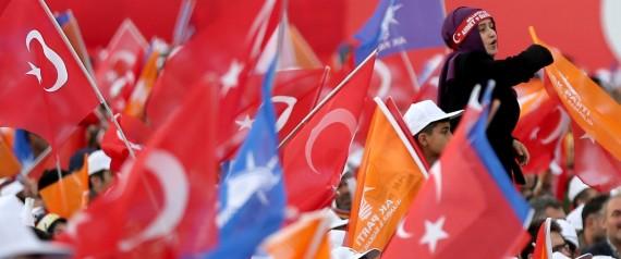 AK PARTY FLAG