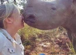 Cette vétérinaire a vraiment un don avec les rhinocéros (VIDÉO)