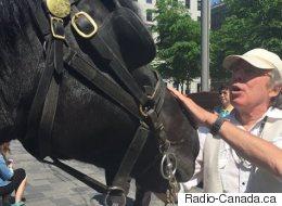 Dernier tour de piste pour les chevaux du Vieux-Montréal (VIDÉO)