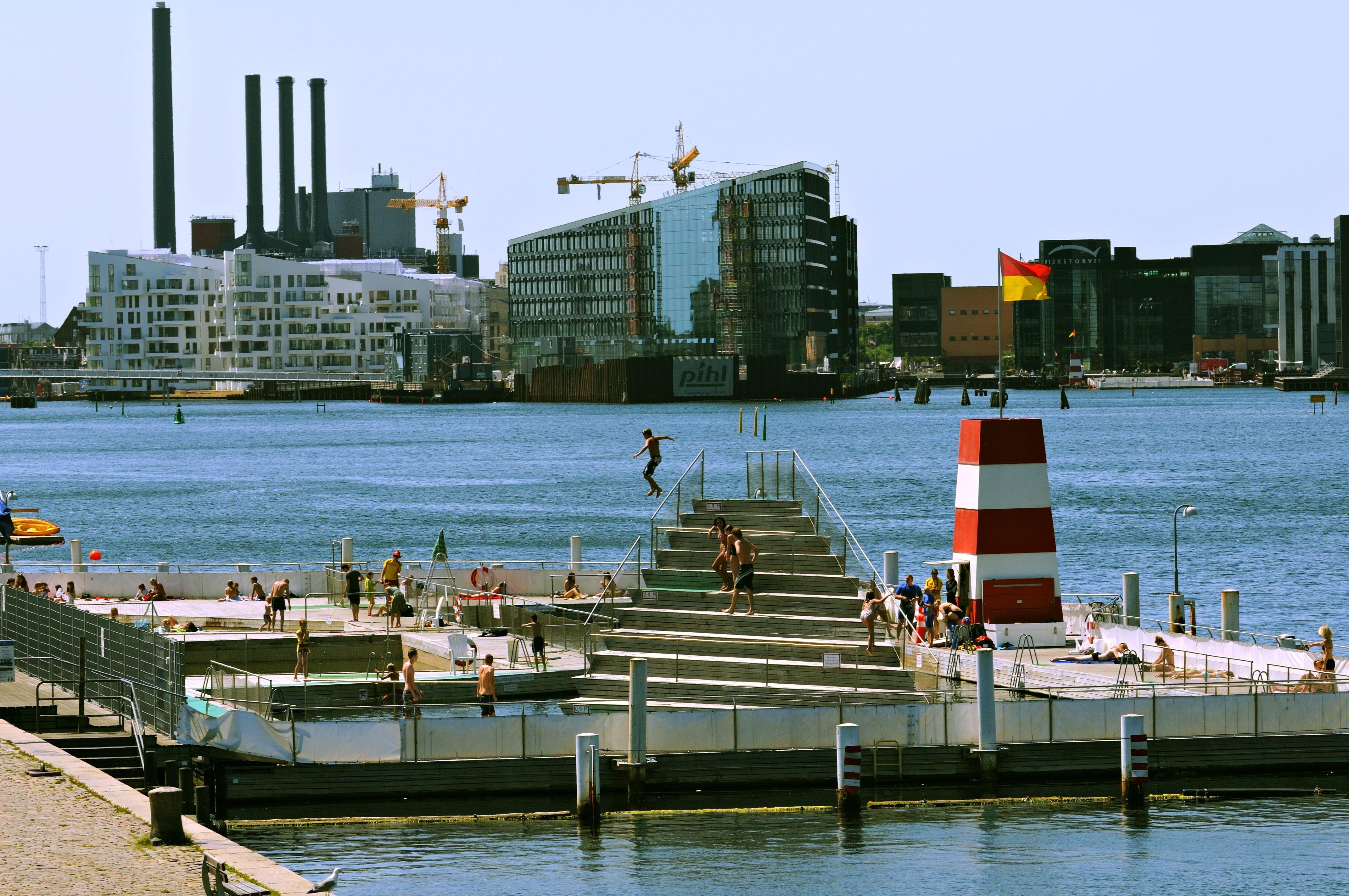 copenhagen harbour swim