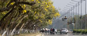 Chandigarh