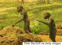 L'homme de Néandertal explorait déjà des grottes il y a 176 500 ans