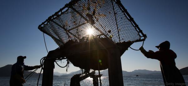 Wie eine Unterwasser-Farm den Hunger in der Welt bekämpfen könnte