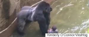 KIMBERLY OCONNOR