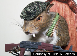 Taxidermic Squirrels: They're Just Like Us (Sort Of) (PHOTOS)