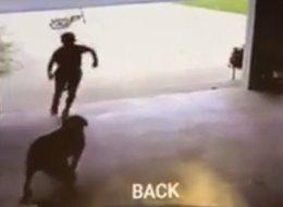 Un enfant surpris en train de courir chez ses voisins pour faire un câlin au chien