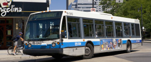 BUS MONTREAL