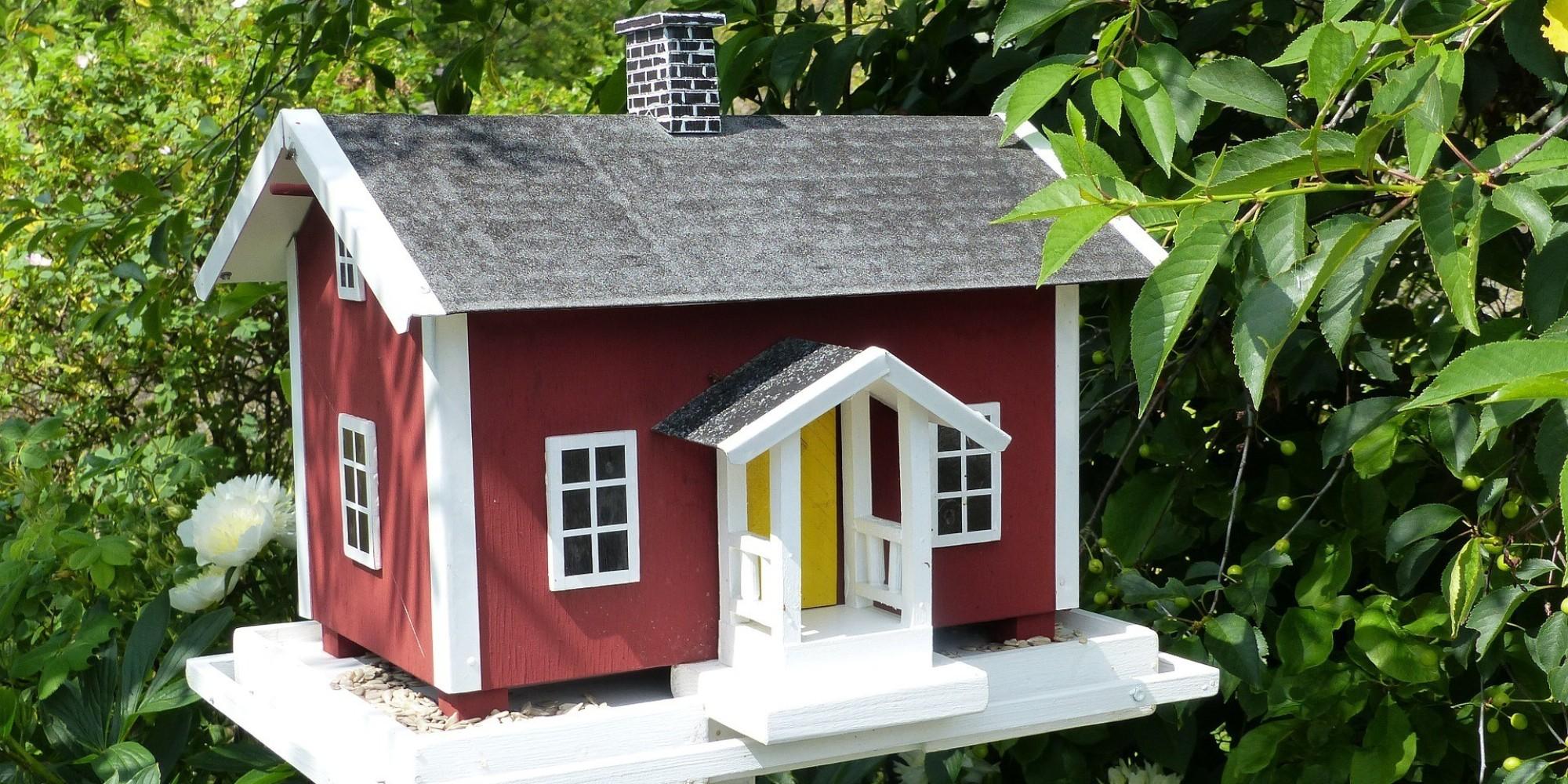 11 casas para p jaros hechas a partir de objetos viejos diy - Casa para pajaros ...