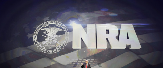 NATIONAL RIFLE ASSOCIATION GUN