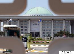 29년 시차의 개헌논의