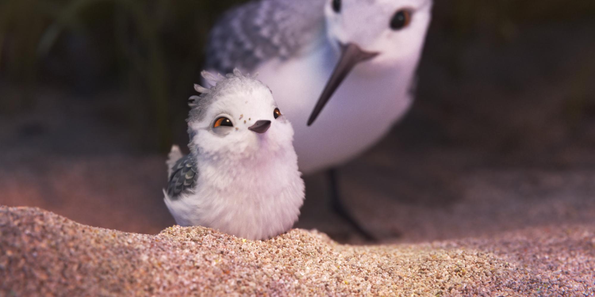 Картинки по запросу Новая короткометражка «Пайпер» от Pixar