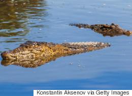 Garçon tué par un alligator: des photos d'enfants au même endroit en solidarité aux parents