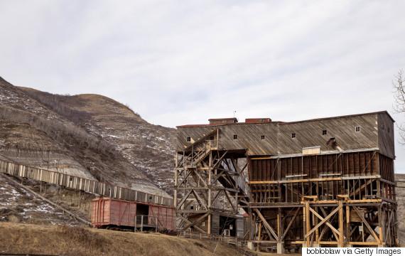 alberta coal