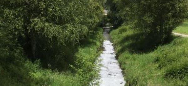Un ruisseau rempli de bière a été découvert en Suisse