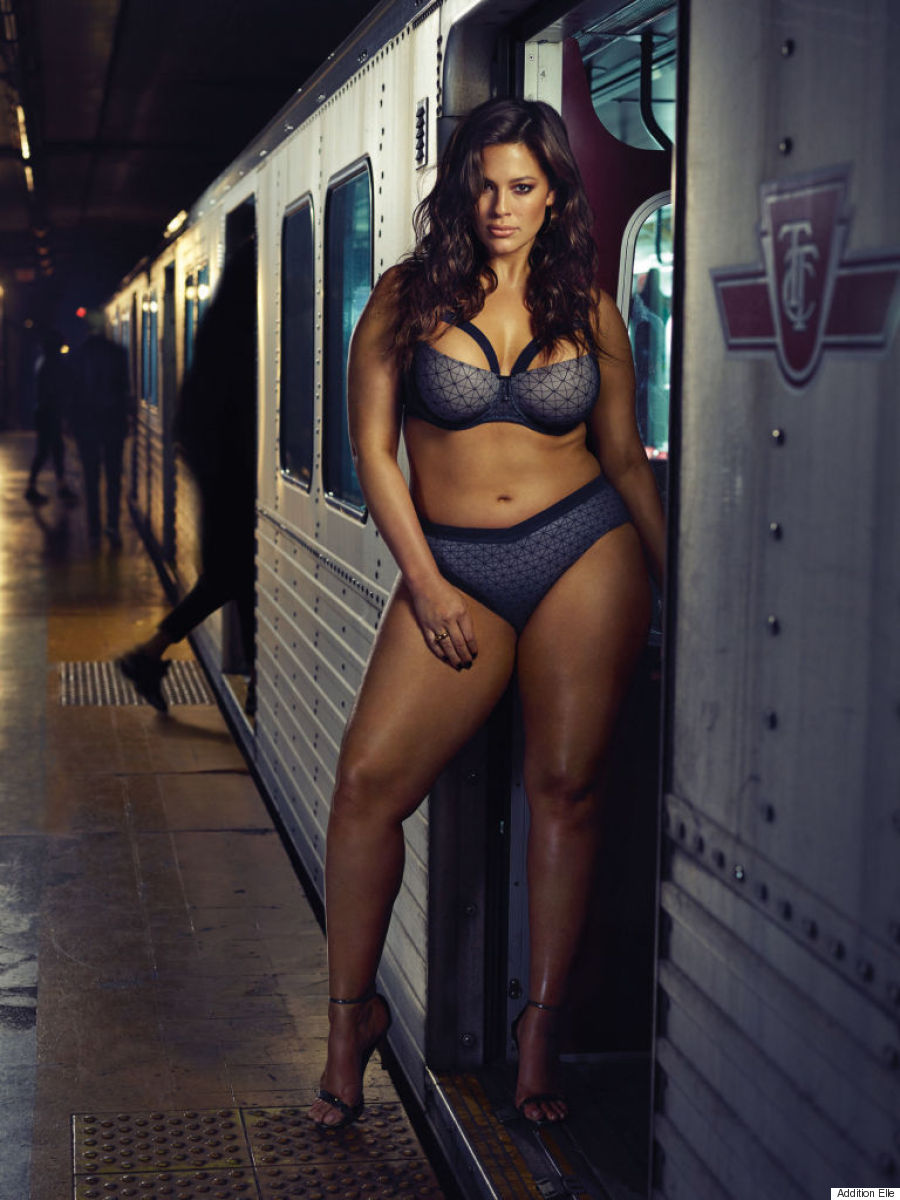 addition elle ashley graham