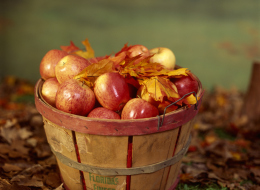 Cozy Up This Fall With These Apple Recipes