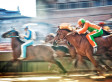 Siena Palio: All In 90 Seconds