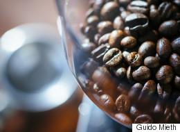 라이트와 다크 로스트 커피 중 카페인이 높은 것은?