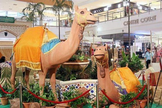 chameaux ioi mall