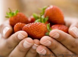 Comment bien cueillir les fraises?