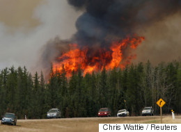 Warm Forecast Means More Forest Fires This Year, Meteorologist Warns