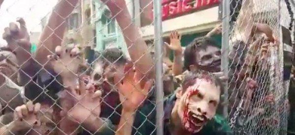 Orde di zombie invadono gli Studios. E Hollywood si trasforma in The Walking Dead