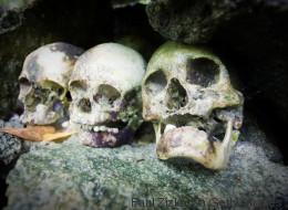 Gehört der Kannibalismus zu Deutschland?