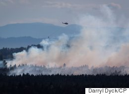 Burns Bog Fire Is A 'Major Emergency': Delta Mayor