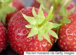 Attendez avant de jeter vos queues de fraises!