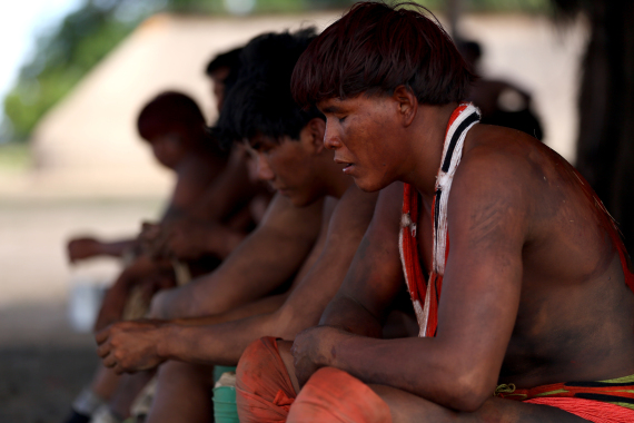 brazil isolated tribes