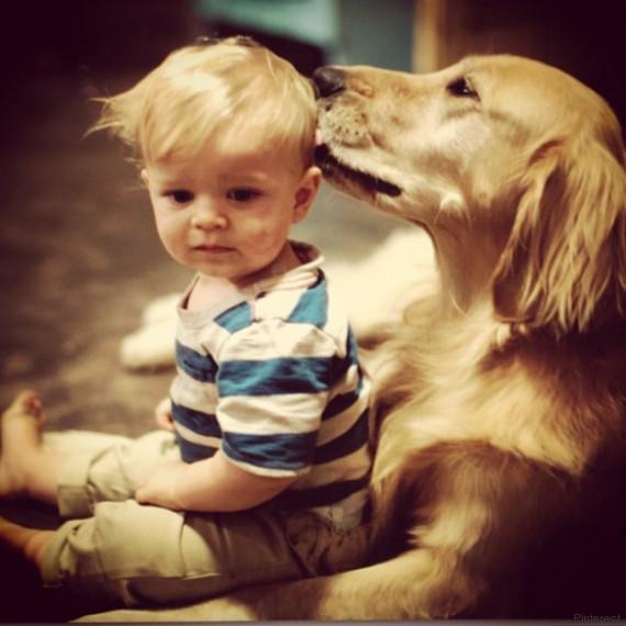 kind hund