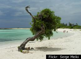 American Tourist Drowns At Infamous Aruba Beach