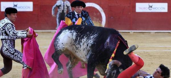 Il torero Victor Barrio muore incornato dal toro in diretta tv. Non succedeva da 24 anni
