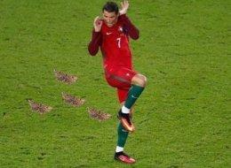 L'homme du match France - Portugal, c'est le papillon
