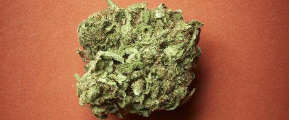 Che cosa successo oggi alla camera sulla cannabis for Oggi alla camera