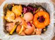 «Les déchets alimentaires ne sont pas des déchets ordinaires»