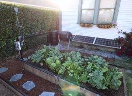 Ce robot cultive votre jardin automatiquement (VIDÉO)