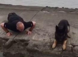 Ce chien imite un policier qui fait des pompes pour la bonne cause (VIDÉO)