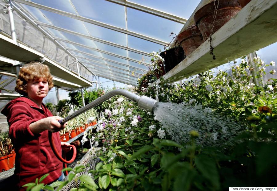 edwards gardens toronto