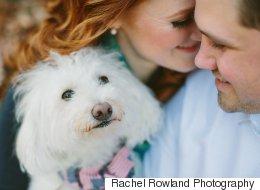 25 photos de fiançailles où les animaux ont volé la vedette