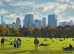BLOG: So sagen Großstädte dem Klimawandel den Kampf an