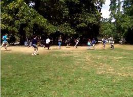 Voici ce qui se passe quand un Leviator apparaît dans Pokémon Go dans un parc