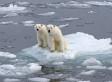 Classes de glace: ensemble avec nos enfants, préservons la planète