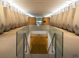 Wine by design, quand le vin devient architecture