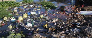 RIO POLLUTION WATER